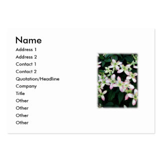 Pink flowers. Clematis. On White. Business Card Template
