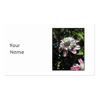 Pink flowers. Clematis. Stylish design. Business Card Template