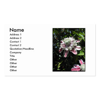 Pink flowers. Clematis. Stylish design. Business Cards