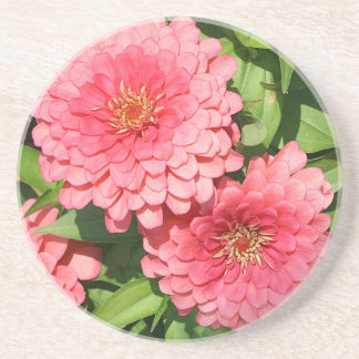 Pink Flowers - Coaster