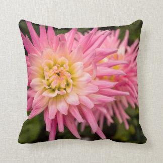 Pink flowers, garden pillow