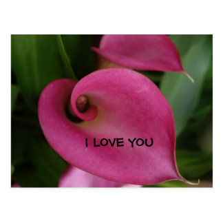 Pink Flowers I Love You Any Occasion Postcard