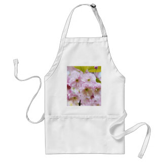 Pink flowers on Japanese cherry tree in city garde Standard Apron