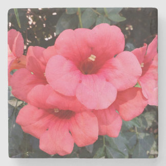 Pink Flowers Photo Marble Stone Coaster