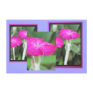 Pink Flowers Stretched Canvas Print