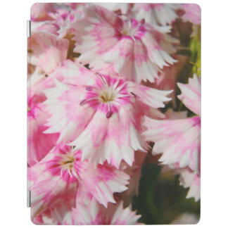Pink Flowers Sweet William iPad Cover