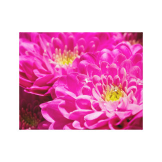 Pink flowers to after the rain canvas print