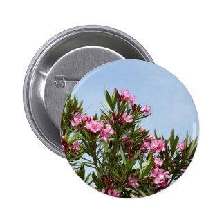 Pink flowers with a blue sky 2 inch round button