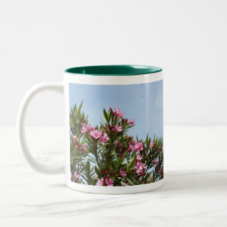 Pink flowers with a blue sky mugs