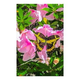 Pink Flowers with a butterfly Design Stationery Design
