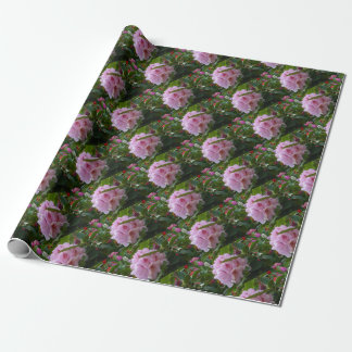 pink flowers with dew wrapping paper