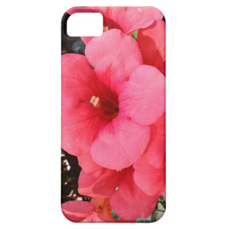 Pink FlowersiPhone SE + iPhone 5/5S, Barely There iPhone 5 Case