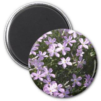 Pink Flox Flower Magnet | Floral Home Decor