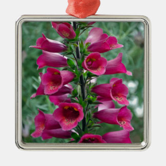 Pink foxglove flowers Silver-Colored square ornament