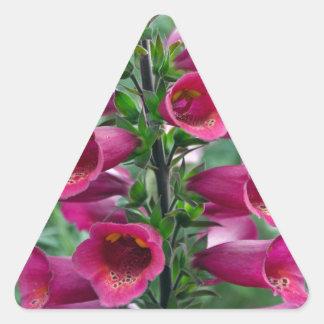 Pink foxglove flowers triangle sticker