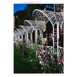 Pink Franciscan Gardens flowers Greeting Card