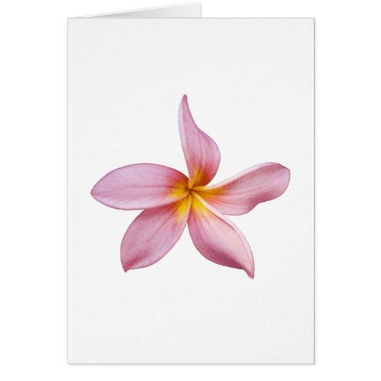 pink frangi panni card