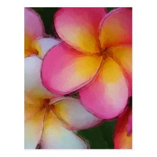 Pink Frangipani Plumeria Flowers Postcard