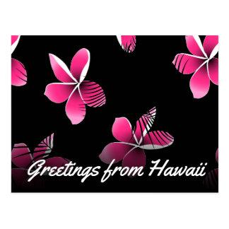 Pink frangipani postcard