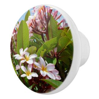 Pink Frangipanis Growing On Bush Ceramic Draw Knob