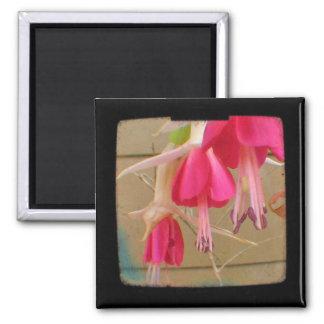Pink Fuchsia Flower Photo TTV Magnet