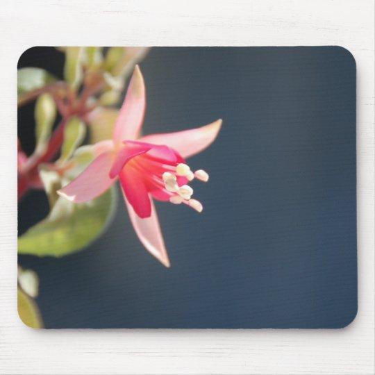 Pink Fuchsia Mousepad