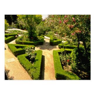 Pink Generalife Gardens, Alhambra, Granada flowers Postcard