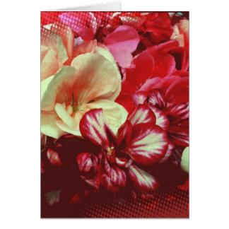 Pink Geranium Blank Greeting Card
