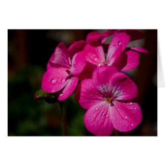 Pink Geranium Note Card