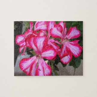 Pink Geraniums Puzzle