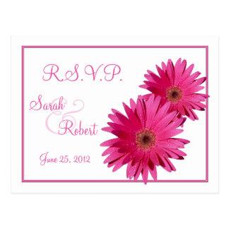 Pink Gerbera Daisy Flowers RSVP Postcard