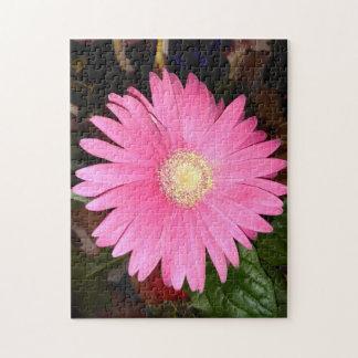 Pink Gerbera Daisy Jigsaw Puzzle
