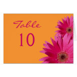 Pink Gerbera Daisy Wedding Table Card