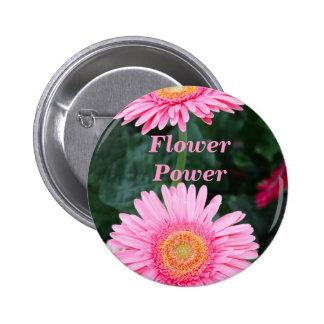 Pink gerbera flowers pinback buttons