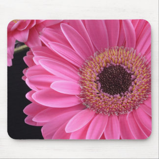 Pink Gerbera Mouse Pad