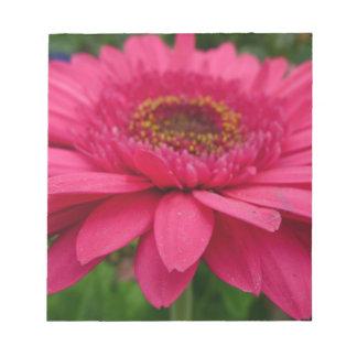 Pink Gerbera Notepads