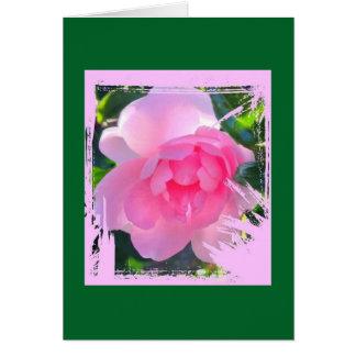 Pink grunge framed camellia. card