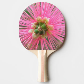 Pink Gum Tree Flower Ping-Pong Paddle