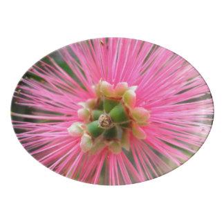 Pink Gum Tree Flower Porcelain Serving Platter
