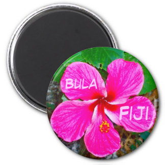 Pink Habiscus Magnet