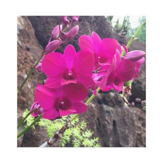 Pink Hawaiian Flowers Canvas Print
