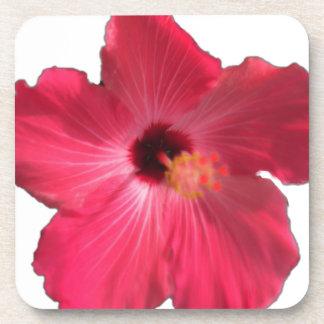 Pink Hibiscus Flower 201711e Coaster