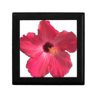 Pink Hibiscus Flower 201711e Gift Box