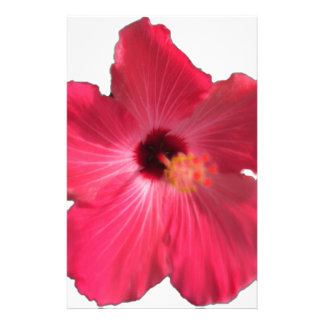 Pink Hibiscus Flower 201711e Stationery