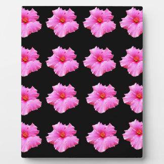 Pink Hibiscus Flowers On Black,_ Plaque