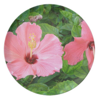 Pink Hibiscus Flowers Plate