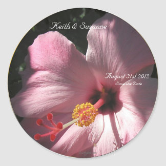 Pink Hibiscus Tropical Flowers Envelope Seals