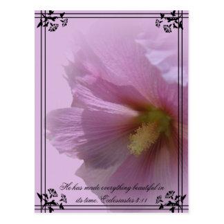 Pink Hollyhock Postcard