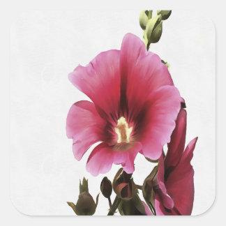 Pink Hollyhock Square Sticker