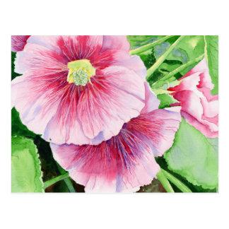 Pink Hollyhocks Postcard